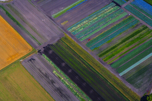 Germany, Bavaria, View of fields, aerial view - PEDF000116
