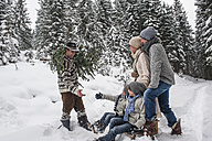 Austria, Altenmarkt-Zauchensee, man with Christmas tree and family together in winter forest - HHF005385