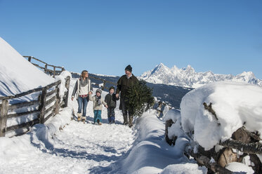 Austria, Altenmarkt-Zauchensee, man with family carrying Christmas tree in winter landscape - HHF005388
