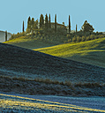 Italy, Tuscany, Val d'Orcia, view to hill with reseidential house hidden behind cypresses - LOM000049