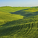 Italy, Tuscany, Val d'Orcia, view to rolling landscape - LOMF000035