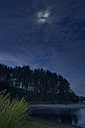 Bulgaria, Rhodope Mountains, forest at shore of Dospat Reservoir by moonlight at night - DEGF000510