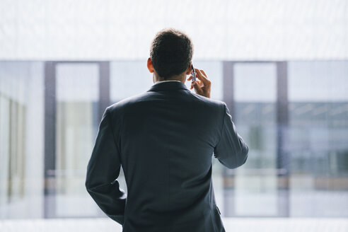 Back view of businessman talking on phone - BZF000185