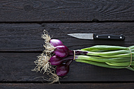 Bunch of red spring onions and kitchen knife on dark wood - CSF026166