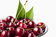 Bowl of sour cherries, close-up - CSF026135