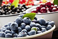Bowl of blueberries and bowls of other fruits in the background - CSF026126