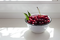 Bowl of sour cherries on window sill - CSF026114