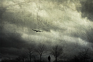Germany, Wuppertal, man walking between bare trees in front of cloudy sky - DWI000579