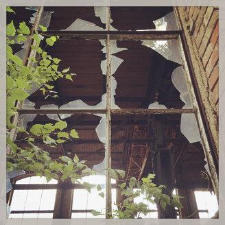Germany, Leipzig, broken window - GWF004465