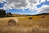 South Africa, view to harvested field with hay bales near Route 62 - MPAF000028