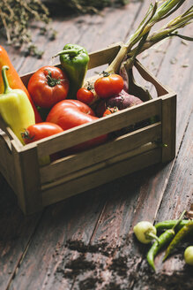 Peppers, chili peppers, tomatoes, onion and savory in a box on wood - AKNF000018