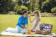 Happy couple having a picnic in park, pregnant woman - ROMF000156