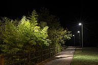 Spain, Naron, walkway in a park lighted by street lamps at night - RAEF000372
