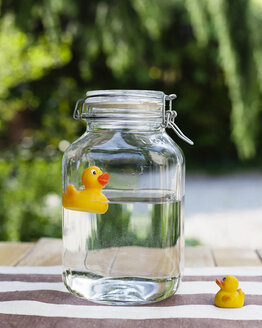Baby rubber duck looking at adult duck closed inside glass jar full of water - LS000072