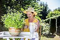 Smiling mature woman caring for potted herbaceous plant in garden - RKNF000309