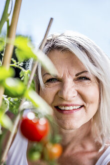 Portrait of smiling mature woman with tomato plant in garden - RKNF000315