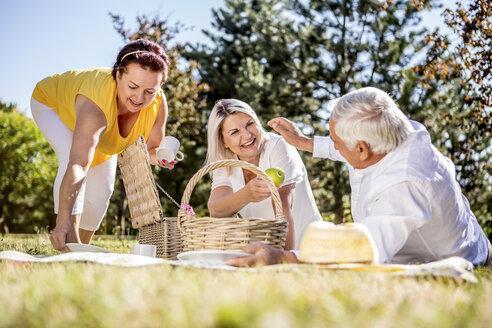 Happy elderly friends having a picnic on a meadow - RKNF000322