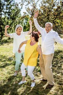 Cheerful elderly friends on a meadow - RKNF000355