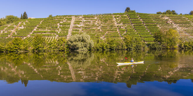 Germany, Stuttgart, woman kayaking on Neckar in front of vineyards - WDF003251