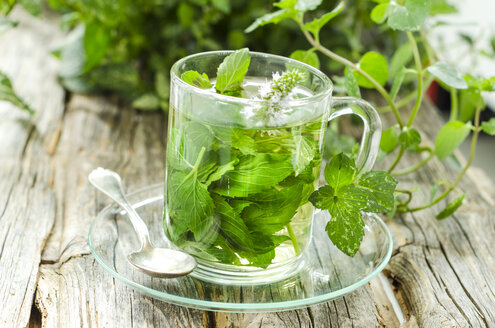 Glass of peppermint tea - ODF001256