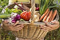 Man holding basket full of organic vegetables - MIDF000638