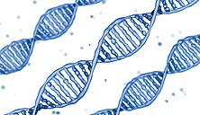 DNA-molecule - HWIF000005