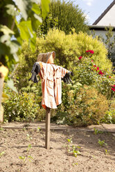 Garden with scarecrow - MFRF000430