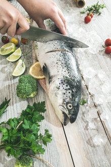 Preparing raw salmon for cooking - DEGF000535