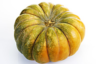Musky pumpkin in front of white background - CSF026375
