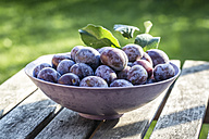 Bowl of plums on wooden table - SARF002104