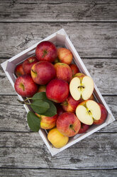 Box of red apples on wood - LVF003862