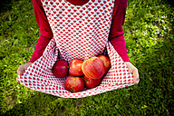 Little girl holding apples with her dress - LVF003872