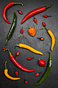 Different chili peppers on slate - LVF003886