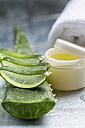 Sliced stem of Aloe Vera and pot of cream - JUNF000439