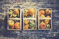 Three baskets of decorative gourds on wood - ASCF000391