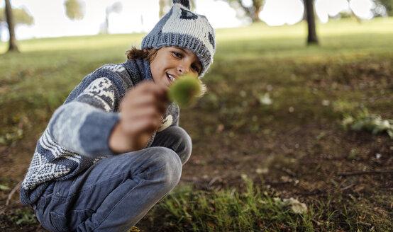 Boy holding sweet chestnut - MGOF000784