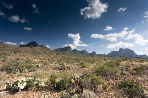USA, Texas, scenics - NNF000242