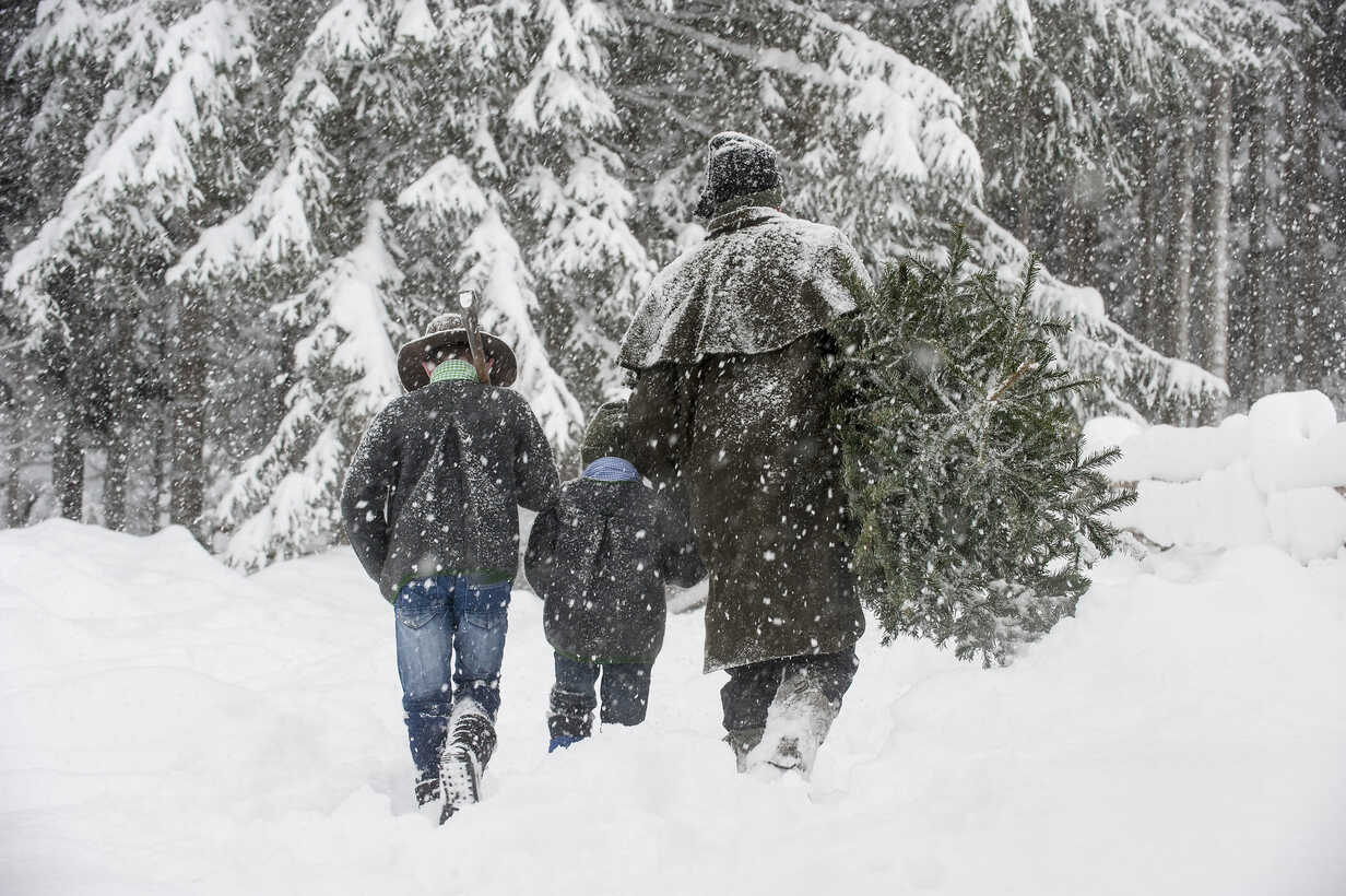 Austria, Altenmarkt-Zauchensee, father with two sons carrying Christmas tree in winter landscape - HHF005370 - Hans Huber/Westend61
