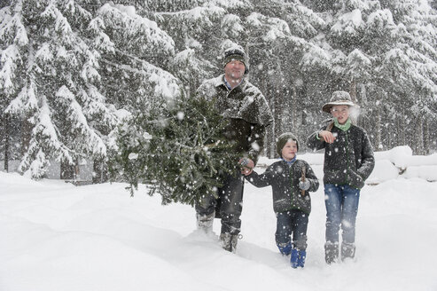 Austria, Altenmarkt-Zauchensee, father with two sons carrying Christmas tree in winter landscape - HHF005373