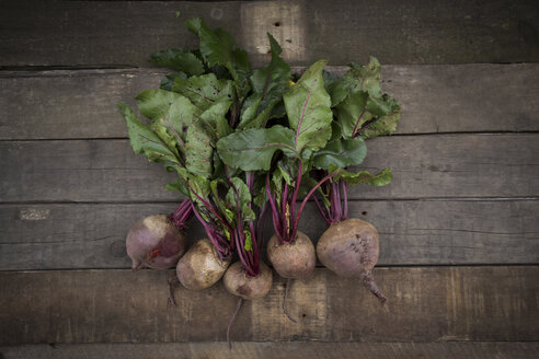 Row of five organic beetroots on dark wood - LVF003924