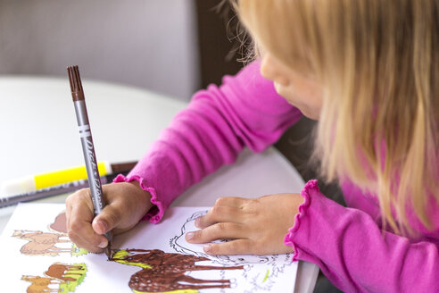Little girl colouring horses in her colouring book - JFEF000700