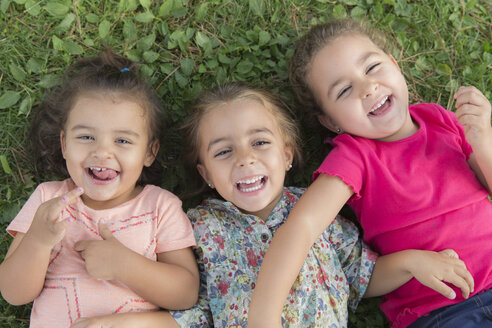 Portrait of three laughing little girls lying side by side on a meadow - ERLF000054