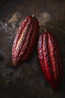 Two cocoa pods on rusty ground - KSWF001629