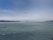 USA, San Francisco, view to Golden Gate Bridge in fog from Alcatraz island - SBDF002320