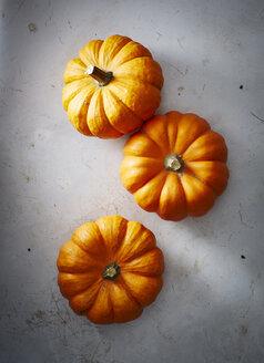 Three pumpkins - KSWF001640