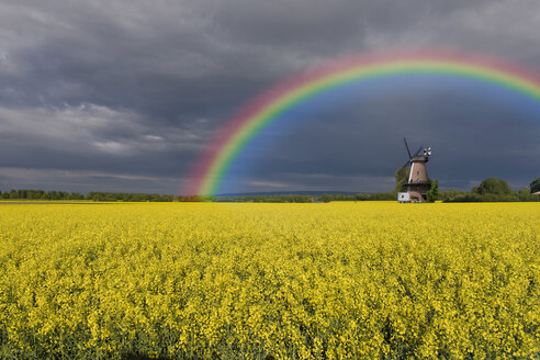 Germany, North Rhine-Westphalia, Lahde, rape field, wind mill and rainbow - KLRF000253