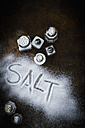 Different salt shakers and the word 'salt' written in salt - KSWF001648