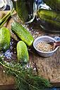 Gherkins fermenting, gherkins, dill, salt and mustard grains - SBDF002376