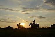 Young women riding into the sunset - BFRF001578