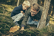 Mature man collecting bay bolete mushrooms with little boy - MFF002406